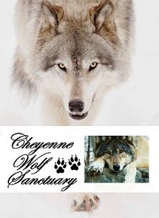 cheyenne wolf sanctuary